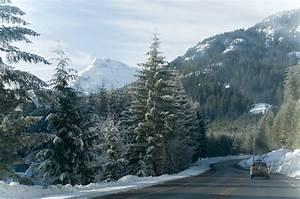 Vancouver Island Landscape In Winter