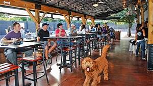 related keywords suggestions for lucky dog bar With dog daycare charlotte nc