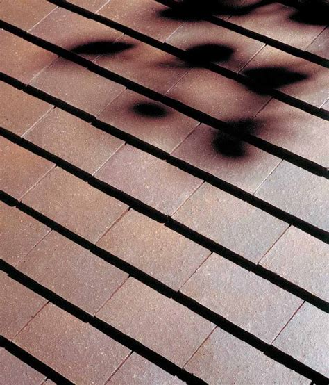 roof tiles name style cost verea s tile the