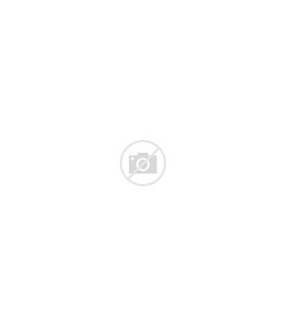 Dryer Vector Hair Salon Realistic Stylist Clipart