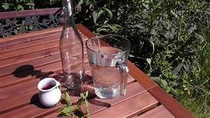Holunderbeersaft Selber Machen : johannisbeer limonade selber machen der bio koch ~ Frokenaadalensverden.com Haus und Dekorationen
