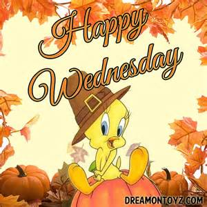 Wednesday Happy Thanksgiving