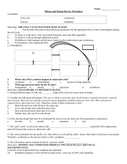 Mitosis And Meiosis Review Worksheet