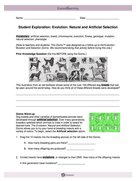 Artificial selection is determined by humans where as natural selection is determined by the environment, both affect the characteristics passed on overtime to a group of organisms. Student Exploration Evolution Natural And Artificial Selection Answer Key Pdf - Fill Online ...