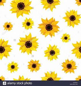 Seamless pattern with sunflowers. Vector illustration ...