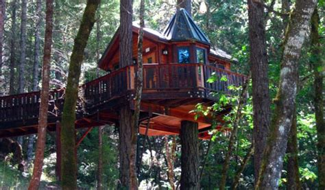 tree house hotel redwood forest caisson studios