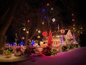 buyers guide for the best outdoor christmas lighting diy With lighting outdoor trees for xmas