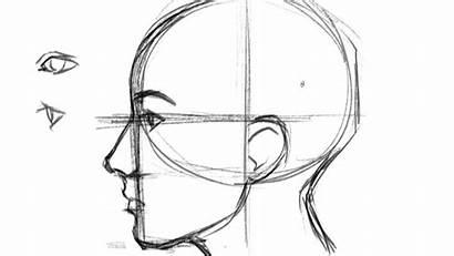 Draw Profile Face