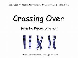 Genetic Recombination - ppt video online download