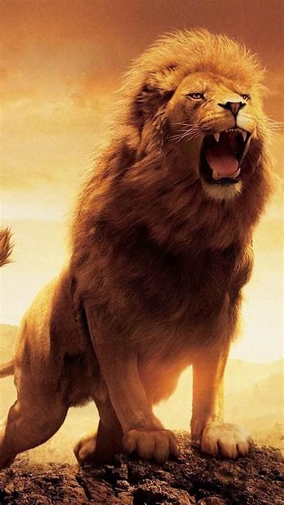 Lion Narnia Wallpapers Galaxy 4k Z1 Xperia