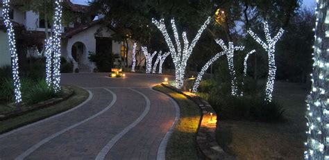 evergreen tree light wrap tree wrapping lighting plantscape solutions of tx