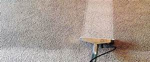 Chemical-Free Carpet and Air Duct Cleaning in Chicago and ...