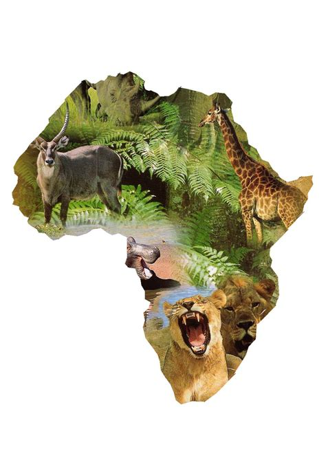 Aardwolf means 'earth wolf' in afrikaans, a language spoken in south africa. CURRICULUM SUPERFRIENDS: Animals in Africa, from A to Z