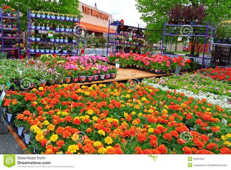 Home Depot Garden Decoration by Home Depot Nursery Editorial Photography Image Of Plants