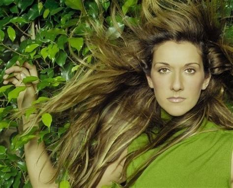 celine dion fan club 1521 best images about jute box music on pinterest