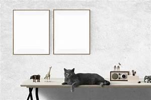 Bilder An Wand Kleben Ohne Rückstände : bilder ohne bohren aufh ngen ~ Sanjose-hotels-ca.com Haus und Dekorationen