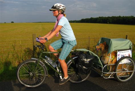 carrello porta cani per bici come trasportare il in auto e in bicicletta in totale