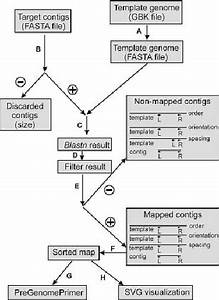 Flow Chart Of A Projector Contig Mapping Run  For Details