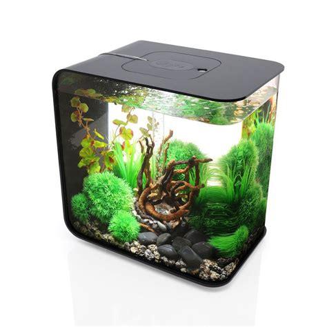 Biorb Flow Aquarium   The Green Head