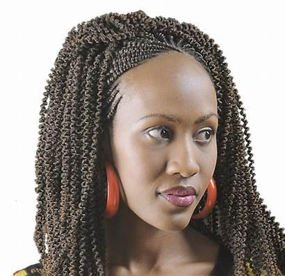 Kinky Afro Bulk Darling Braids Tanzania Crochet