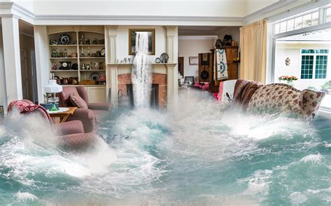 difference  flood insurance  water backup