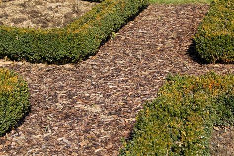 Garten Gestalten Rindenmulch by Rindenmulch Garten Anlegen Vorgarten Rindenmulch