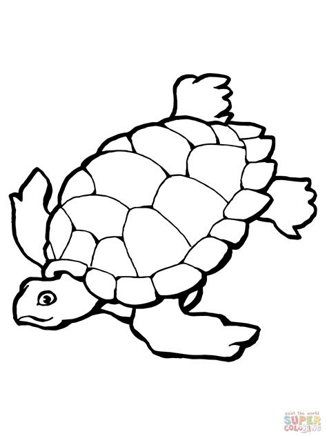 Coloring Turtle by Sea Turtle Coloring Pages To And Print For Free