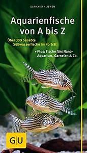 Großes Aquarium Kaufen : aquarienfische von a bis z ber 300 beliebte s wasserfische im portr t plus fische f rs nano ~ Frokenaadalensverden.com Haus und Dekorationen