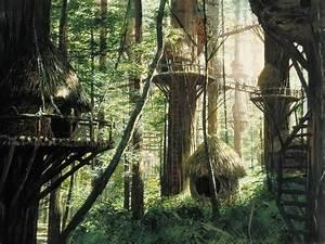 Bright Tree Village Wookieepedia FANDOM Powered By Wikia