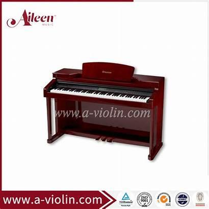 Piano Upright Dp900 Keys Teaching China