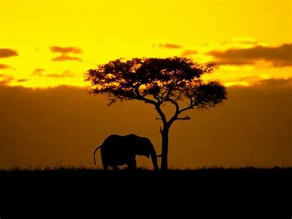African Sunset Wallpapers Club Definition Maria Posted