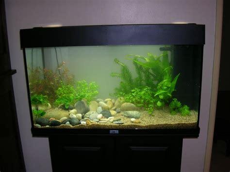 installation aquarium juwel 125