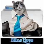 Nine Lives Deviantart Folder Icon