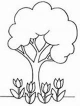 Coloring Tree Spring Trees Pages Seasons sketch template