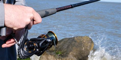 fishing rod  reel   reviews  wirecutter