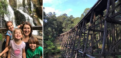 5 Must See, Kid Friendly Places To Visit In Noojee!