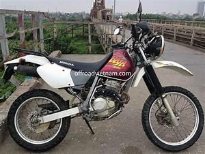 250cc Dirt Bike : honda xr250 xr250 baja dirt bikes hanoi offroad vietnam rental ~ Medecine-chirurgie-esthetiques.com Avis de Voitures