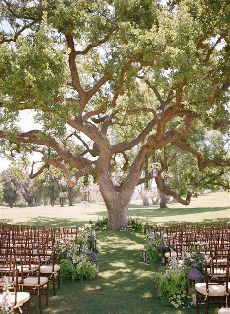 best 25 outdoor wedding backdrops ideas on pinterest