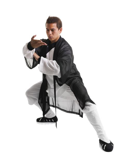 Kung Fu Best by Everything You Need To About All The Kung Fu Fighting
