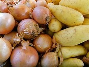 Kartoffeln Und Zwiebeln Lagern : das wurzelgem se ~ Markanthonyermac.com Haus und Dekorationen