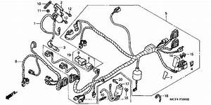 Wire Harness  Fr   For 2003 Honda Rvt1000r Rvt1000r  Rc51