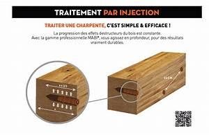 Traitement Bois Charpente : injecteurs pour traitement des bois des offres imbattables ~ Edinachiropracticcenter.com Idées de Décoration