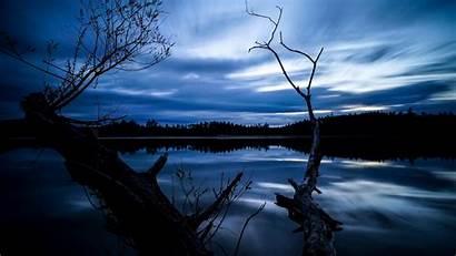 Night Sky Tree Lake Dry Under Wallpapers
