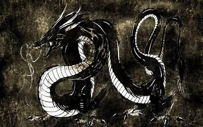 Japanese Dragon Wallpapers Code Various Chinese Wallpapersafari
