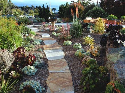 drought resistant landscape design inspirations succulent plants arizona drought resistant landscape design succulent landscaping