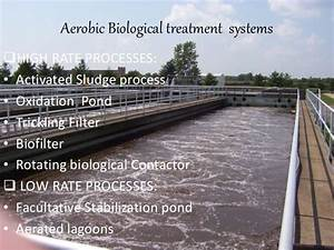 Microbiology Of Waste Water Treatment