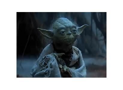 Yoda Giphy Gifs Meme Child Christmas Memes