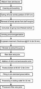 Flow Diagram For Extraction And Processing Of Aloe Vera