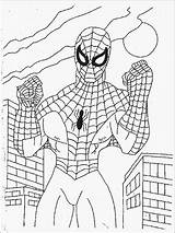 Spiderman Coloring Pages Print sketch template