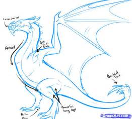 How to Draw Dragon Body Parts